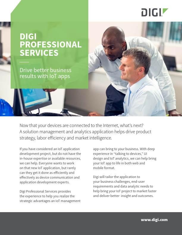 Digi Professional Services Flyer